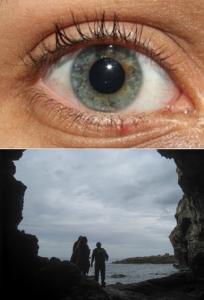 La pupila se dilata cuando disminuye la luz